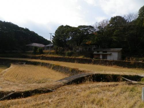 20141231kumanokodo (19)