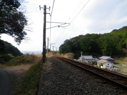 20141231kumanokodo (16)