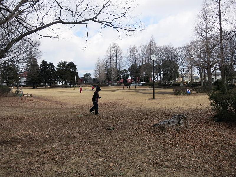 高野台公園2