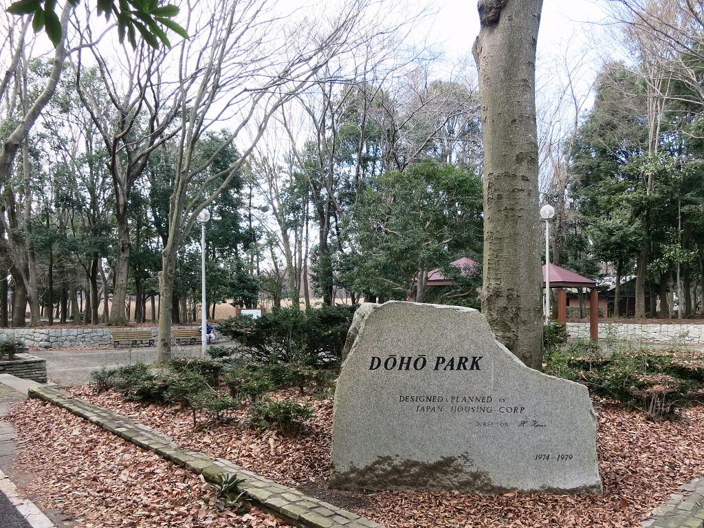 洞峰公園1