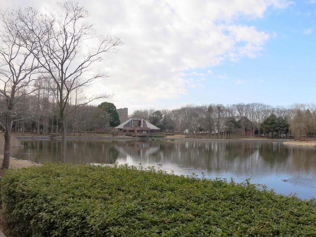 洞峰公園池
