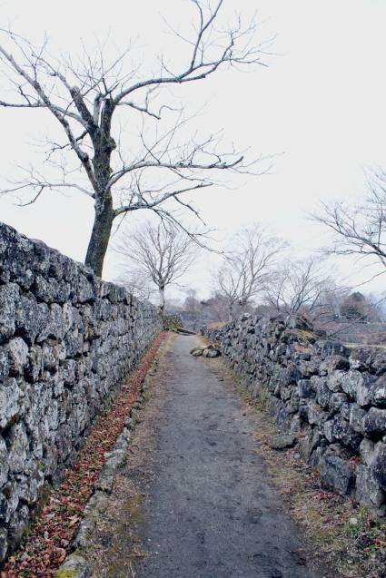 石垣の道2