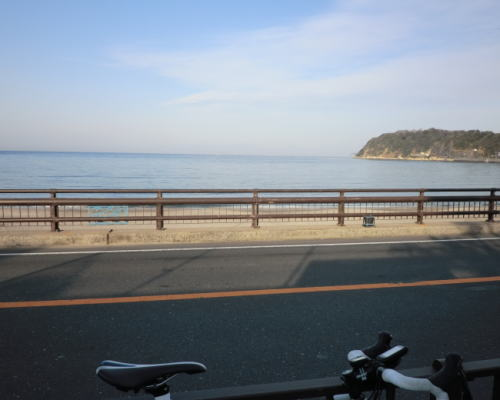 20150329_shonanpota_3