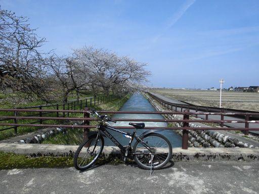 asakura0412-11.jpg
