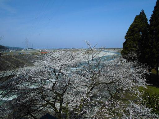 asakura0412-6.jpg