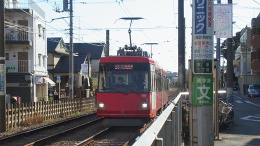 koto-shiomi (4)