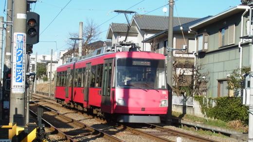 koto-shiomi (8)