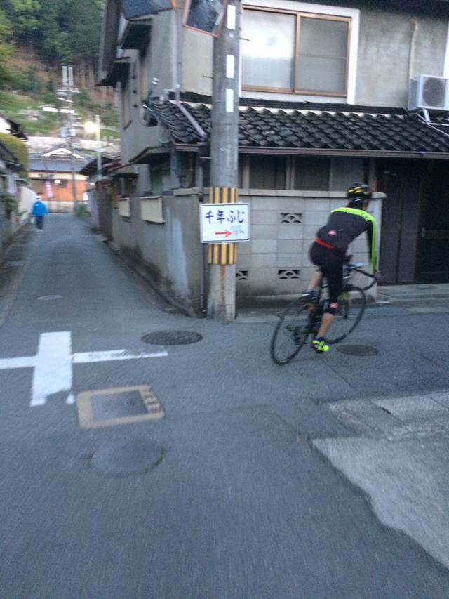 sennennfuji2015_5_3.jpg