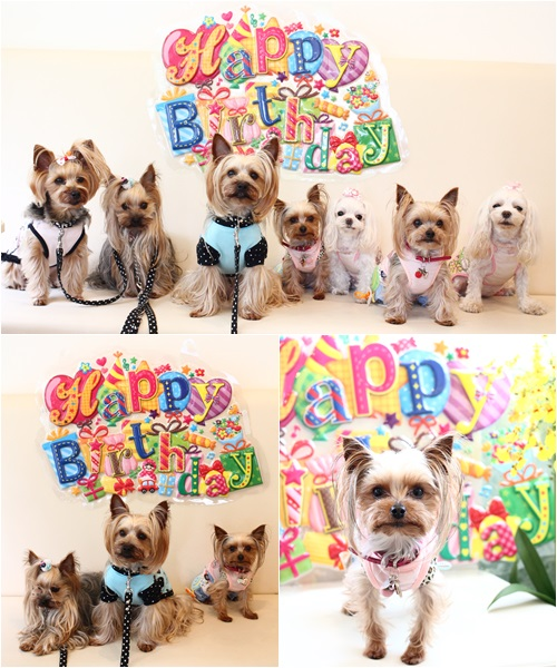 誕生日の集合写真