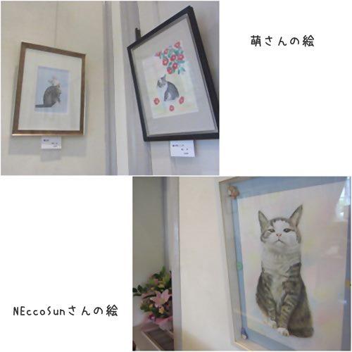 cats15_201506201951294f3.jpg