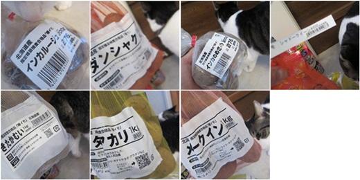 cats_2015031815412714a.jpg