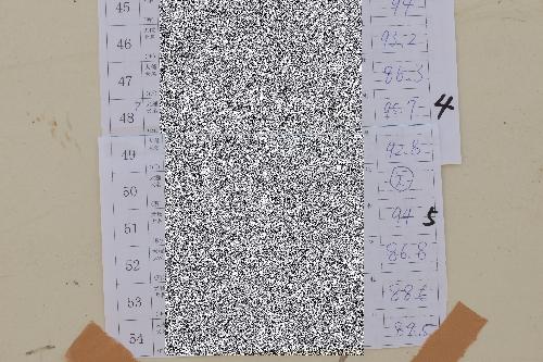 20150531 (17)