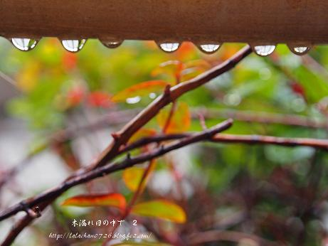 雨の金曜日