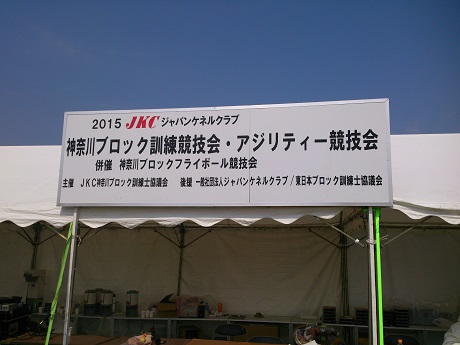 DSC_1090.jpg