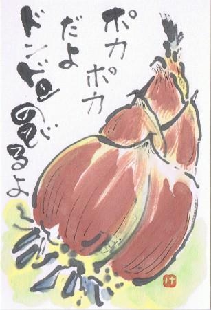 takenoko CCF201505