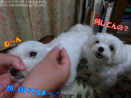20150613_1.jpg
