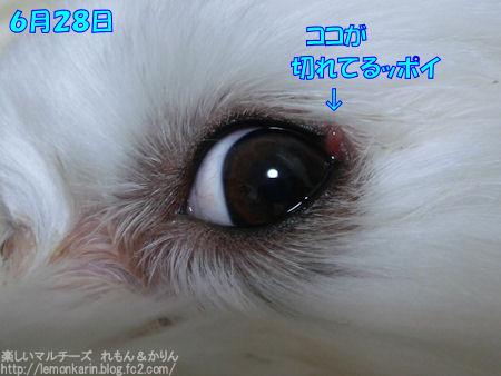 20150629_2.jpg