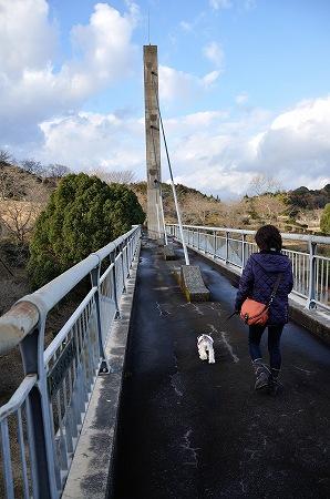 橋渡るぞー