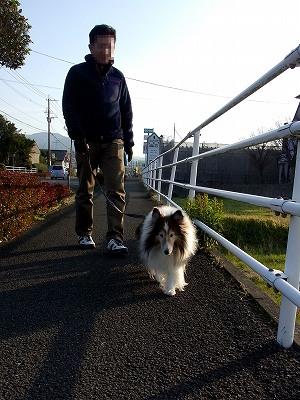 3日の散歩2