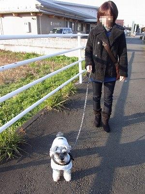 3日の散歩3