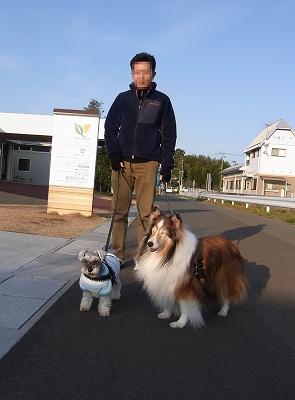 3日の散歩4