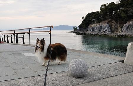美犬と美海