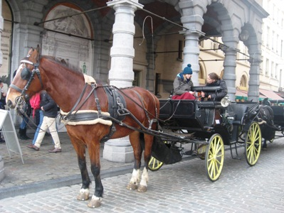 ブリュッセルのグランプラス広場の馬