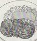 鶏つくねの照り焼き図