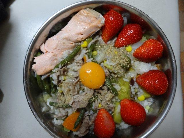犬の手作りご飯01