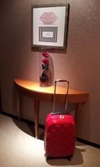 ルルギネススーツケース/バッグ赤