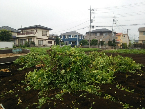 DSC_8376.png