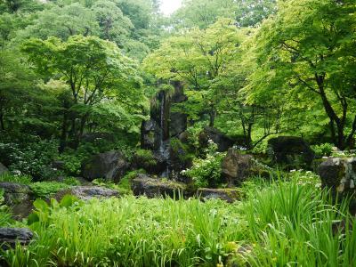 花寺 吉祥寺 丈六の滝