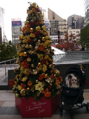 2014六本木7