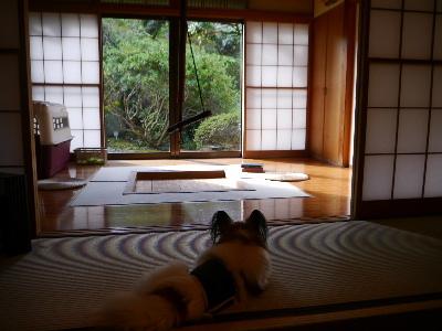 2014伊豆旅行7−9