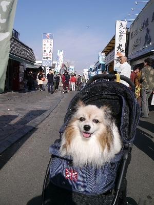 2014伊豆旅行7−13