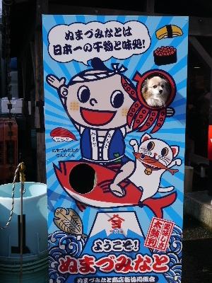 2014伊豆旅行7−14