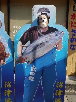 2014伊豆旅行7−27