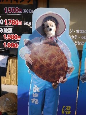 2014伊豆旅行7−28