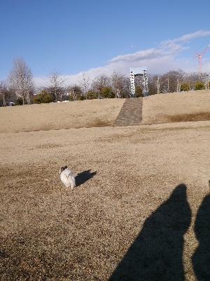 万博公園13