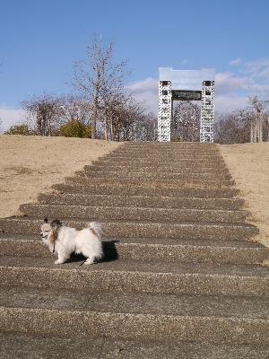 万博公園14