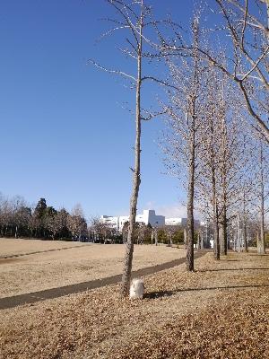 万博公園18