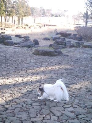 万博公園21