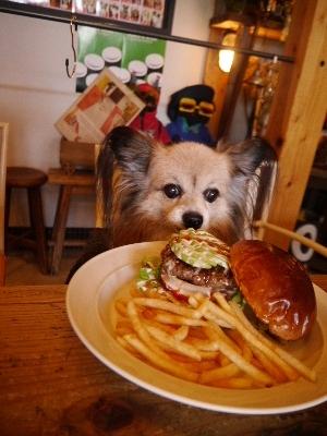 ハンバーガー8