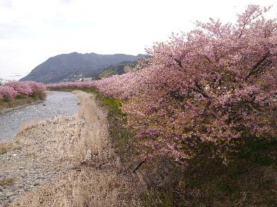 2015伊豆旅行2−8