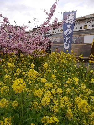 2015伊豆旅行2−11
