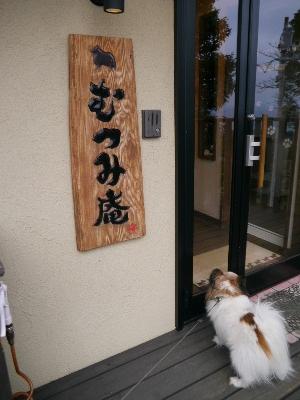 2015伊豆旅行3−2
