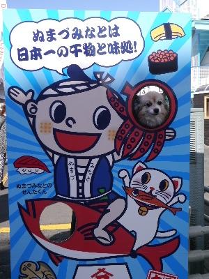 2015伊豆旅行5−11