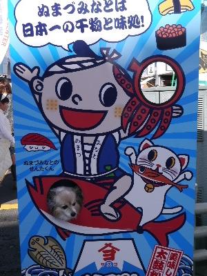 2015伊豆旅行5−12