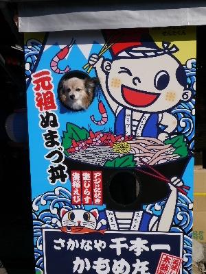 2015伊豆旅行5−16