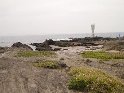 城ヶ島37